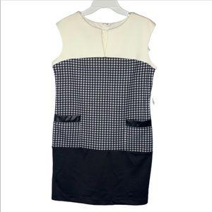 NWT Sandra Darren black/ivory dress